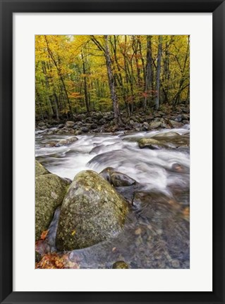Framed Roaring Waters I Print