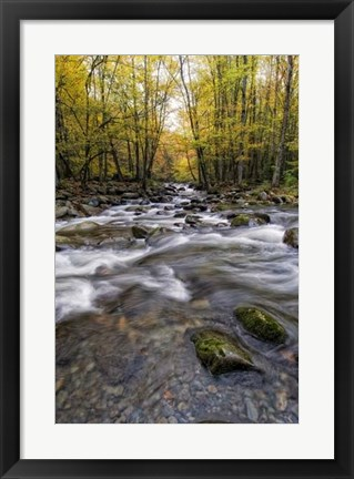Framed Roaring Waters II Print
