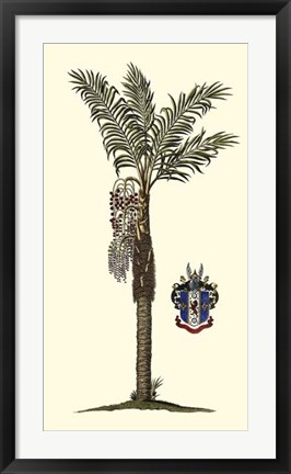 Framed Elongated Exotic Palm I Print