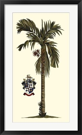 Framed Elongated Exotic Palm II Print