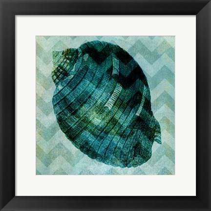 Framed Chevron Shell VIII Print
