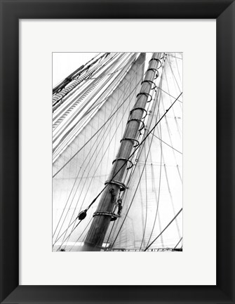 Framed Set Sail VI Print