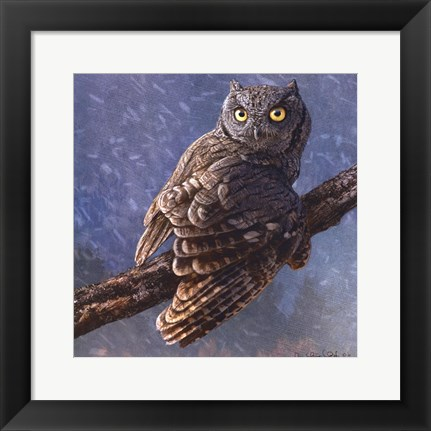 Framed Owl in Winter I Print