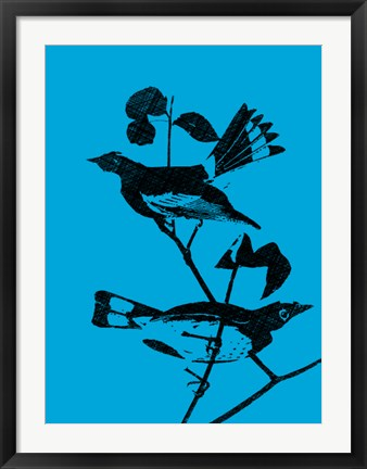 Framed Starlings Print