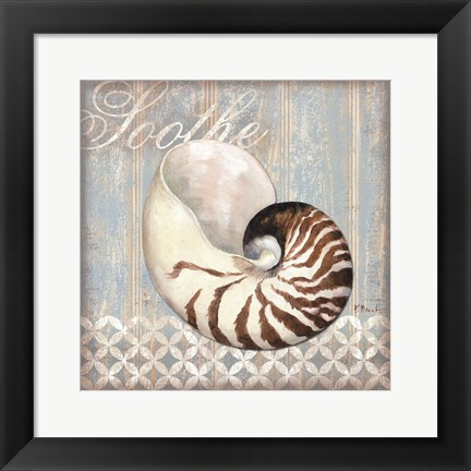 Framed Spa Shells III - mini Print