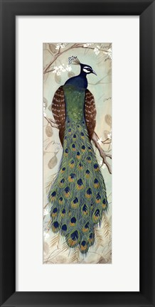 Framed Peacock I - mini Print