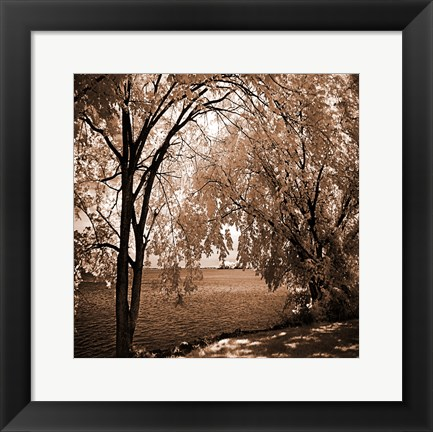 Framed Hopewell Shores Sepia Sq I Print
