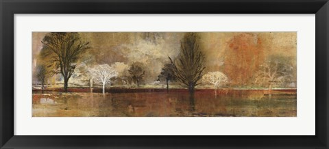 Framed Tree Shadows II Print