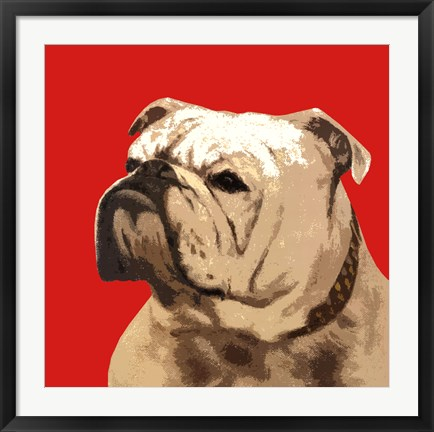 Framed British Bulldog, Red Print