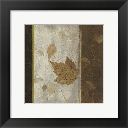Framed Earthen Textures XVI Print