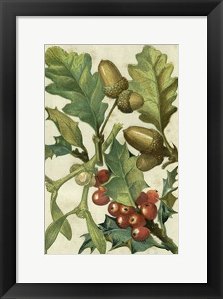 Framed Fruits & Foliage II Print