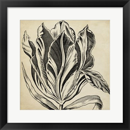 Framed Graphic Floral I Print