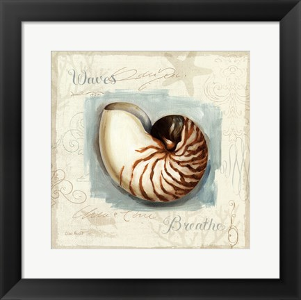 Framed Coastal Jewels II Print