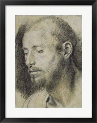 Framed Study of the Head of a Bearded Man Print