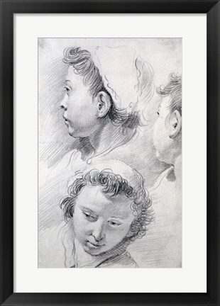 Framed Three Studies of the Head of a Youth Print