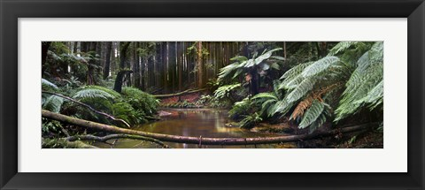 Framed Aire River Print