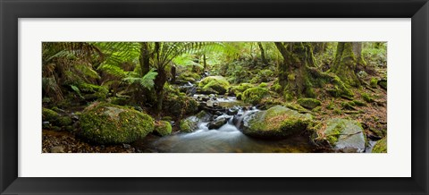 Framed Cement Creek Print