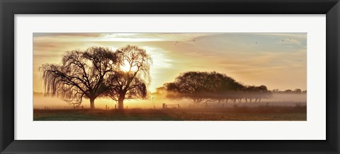Framed Misty Morning 2 Print