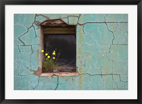 Framed Window 3 Print