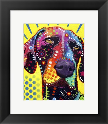 Framed German Short Hair Pointer Print