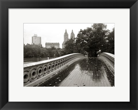 Framed Bow Bridge 2010 Print