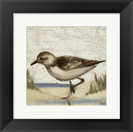 Framed Beach Bird IV Print