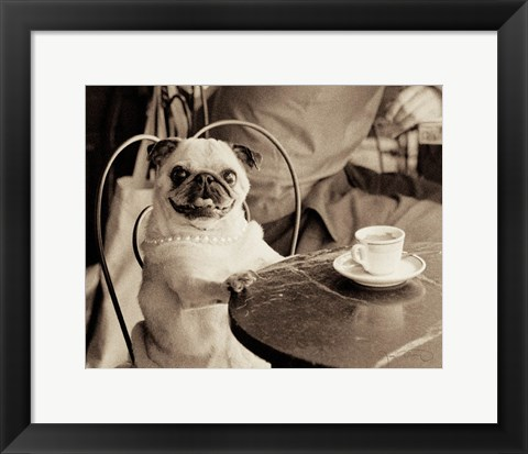 Framed Cafe Pug Print