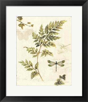 Framed Ivies and Ferns III Print