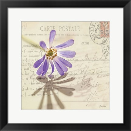 Framed Vintage Letter and Purple Daisy Print