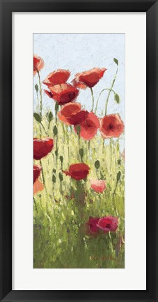 Framed Mountain Poppies I Print
