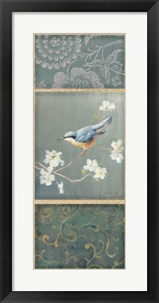 Framed Nuthatch Print