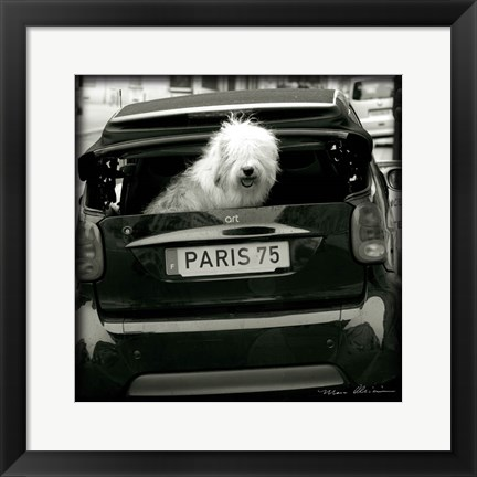Framed Paris Dog I Print