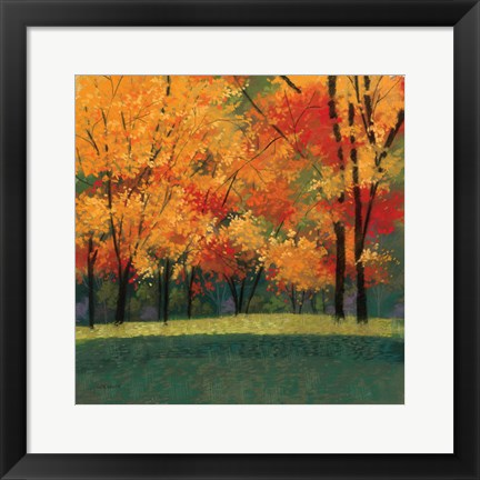 Framed Bright Autumn Day I Print