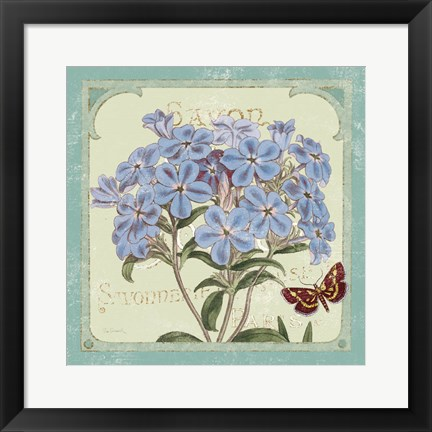 Framed Parisian Flower  II Print