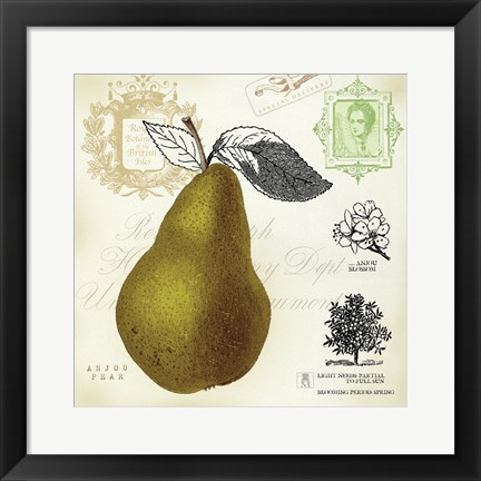 Framed Pear Notes Print