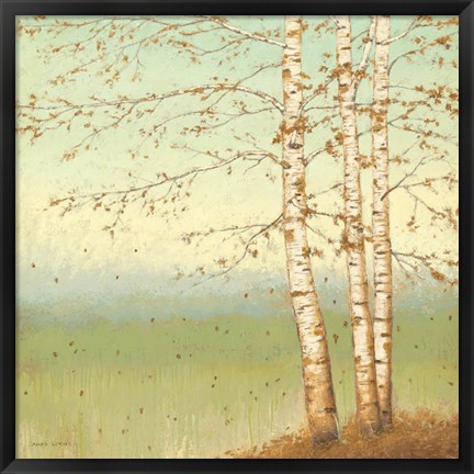 Framed Golden Birch II with Blue Sky Print