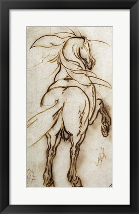 Framed Study of a Rearing Horse Print