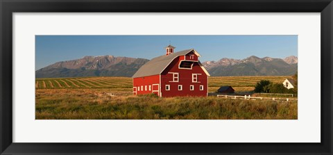 Framed Barn in a field with a Wallowa Mountains in the background, Enterprise, Wallowa County, Oregon, USA Print
