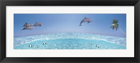 Framed Dolphins Leaping In Air Print