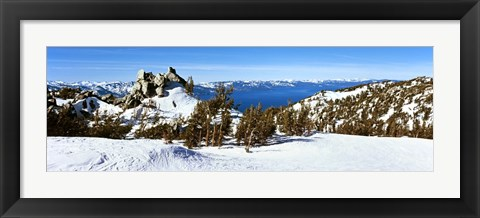 Framed Trees on a snow covered landscape, Heavenly Mountain Resort, Lake Tahoe, California-Nevada Border, USA Print