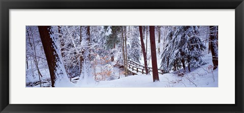 Framed Winter footbridge Cleveland Metro Parks, Cleveland OH USA Print
