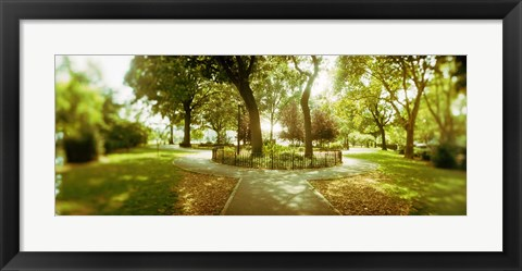 Framed Trees in a park, McCarren Park, Greenpoint, Brooklyn, New York City, New York State, USA Print