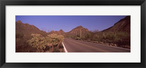 Framed Road Through Saguaro National Park, Arizona Print