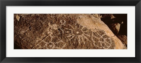 Framed Close-up of petroglyphs on a rock, Saguaro National Park, Tucson, Arizona, USA Print