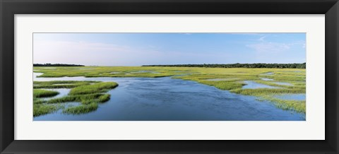 Framed Sea grass in the sea, Atlantic Coast, Jacksonville, Florida, USA Print