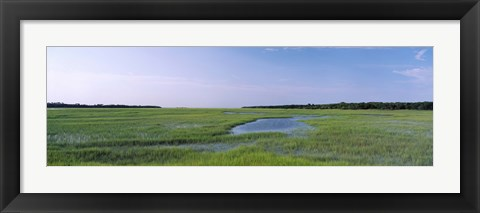Framed USA, Florida, Jacksonville, Atlantic Coast, Salt Marshes Print