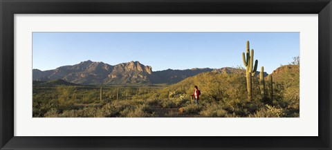 Framed Hiker standing on a hill, Phoenix, Arizona, USA Print