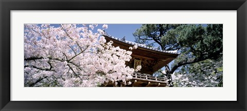 Framed Golden Gate Park, Japanese Tea Garden Print
