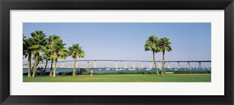 Framed Palm trees on the coast with bridge in the background, Coronado Bay Bridge, San Diego, San Diego County, California, USA Print