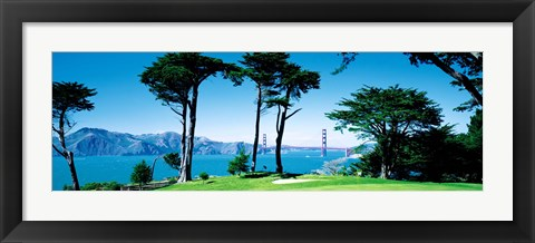 Framed Golf Course w\ Golden Gate Bridge San Francisco CA USA Print